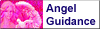 Angel Guidance just for you!