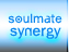 Soul Mate Synergy